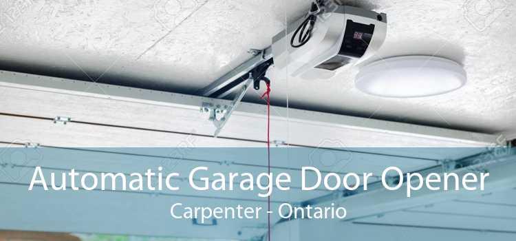 Automatic Garage Door Opener Carpenter - Ontario