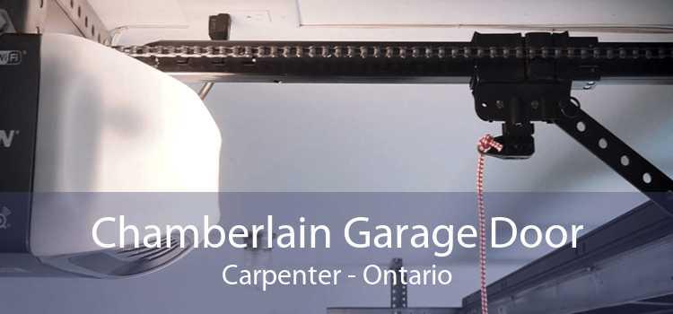 Chamberlain Garage Door Carpenter - Ontario