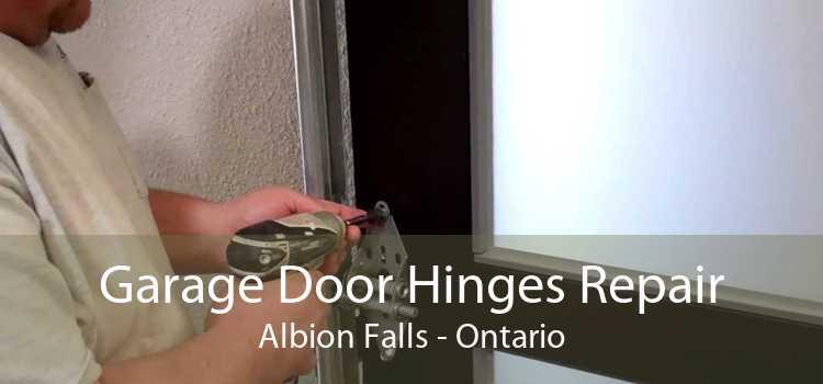 Garage Door Hinges Repair Albion Falls - Ontario