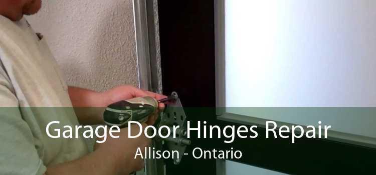 Garage Door Hinges Repair Allison - Ontario