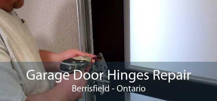 Garage Door Hinges Repair Berrisfield - Ontario