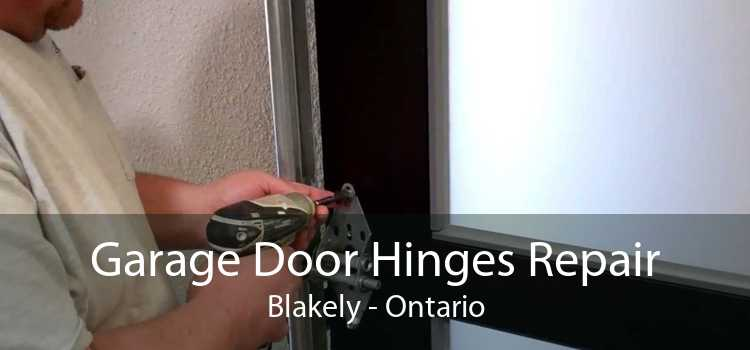 Garage Door Hinges Repair Blakely - Ontario