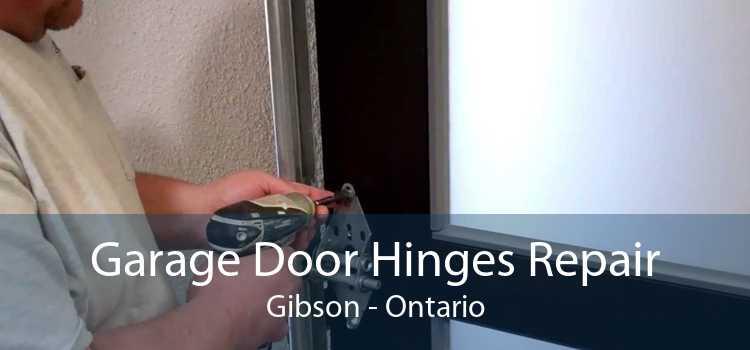 Garage Door Hinges Repair Gibson - Ontario