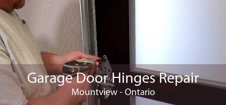 Garage Door Hinges Repair Mountview - Ontario