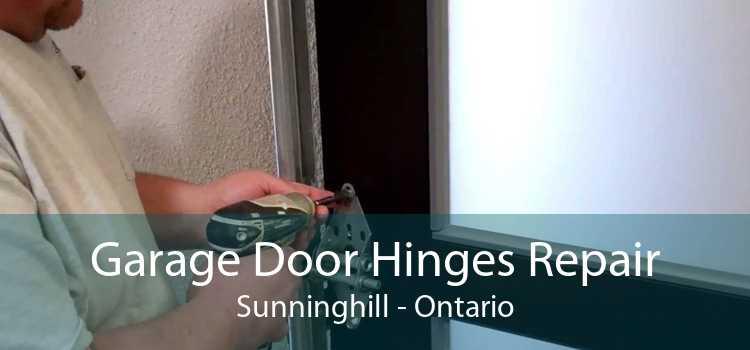 Garage Door Hinges Repair Sunninghill - Ontario