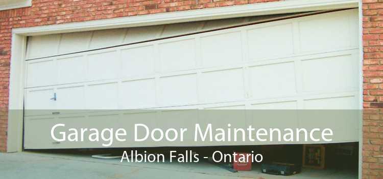 Garage Door Maintenance Albion Falls - Ontario