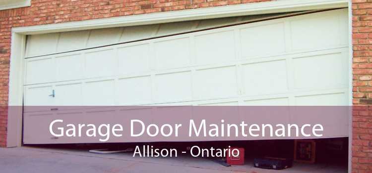 Garage Door Maintenance Allison - Ontario