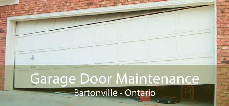 Garage Door Maintenance Bartonville - Ontario