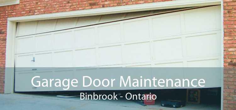 Garage Door Maintenance Binbrook - Ontario