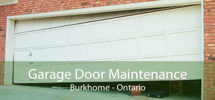 Garage Door Maintenance Burkhome - Ontario