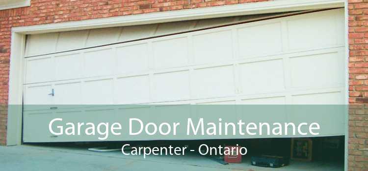 Garage Door Maintenance Carpenter - Ontario