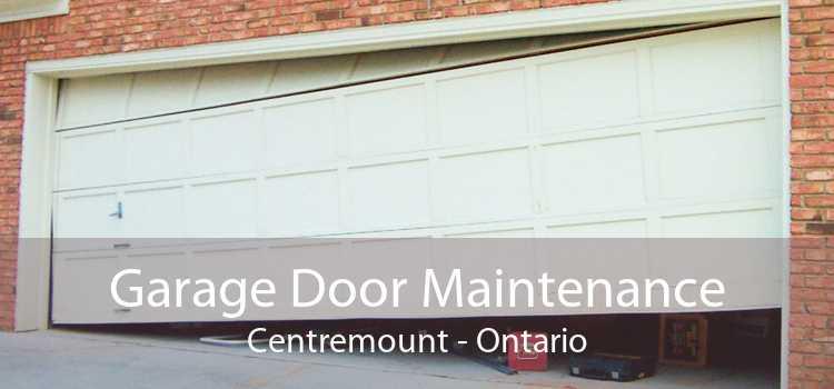 Garage Door Maintenance Centremount - Ontario
