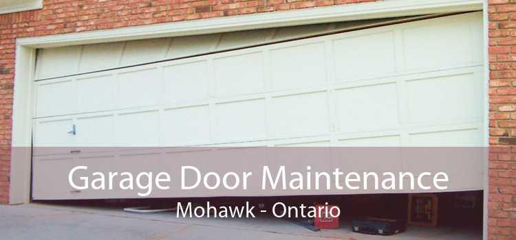 Garage Door Maintenance Mohawk - Ontario