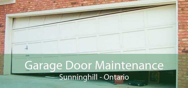 Garage Door Maintenance Sunninghill - Ontario