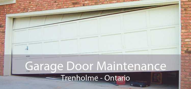 Garage Door Maintenance Trenholme - Ontario