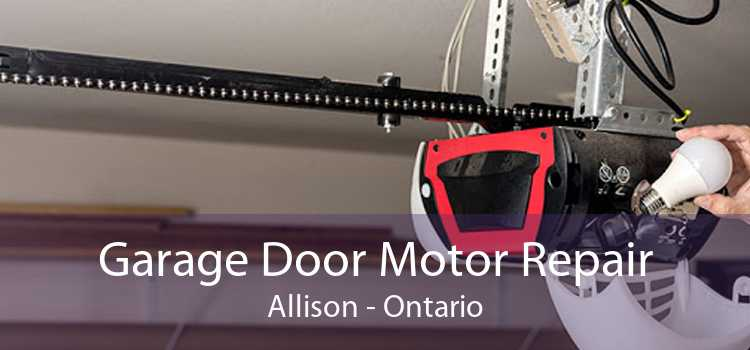 Garage Door Motor Repair Allison - Ontario