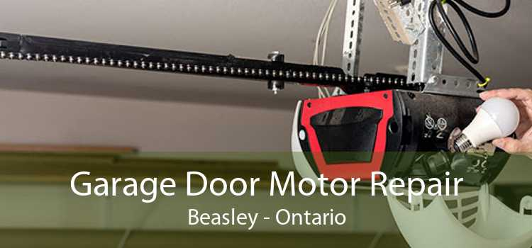 Garage Door Motor Repair Beasley - Ontario