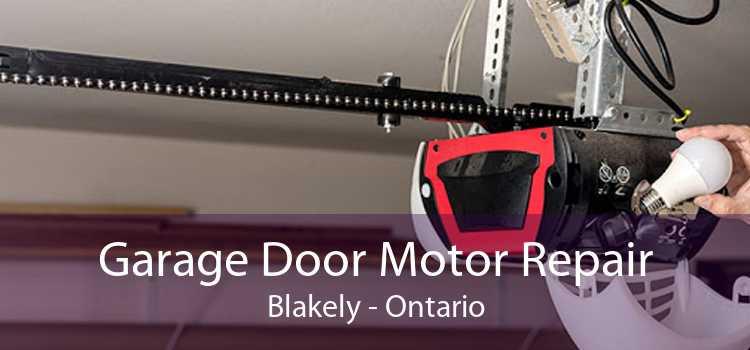 Garage Door Motor Repair Blakely - Ontario