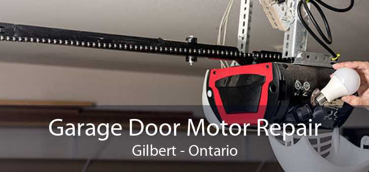 Garage Door Motor Repair Gilbert - Ontario