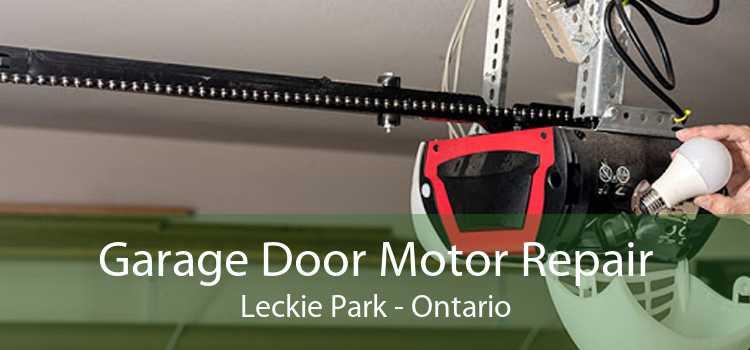 Garage Door Motor Repair Leckie Park - Ontario