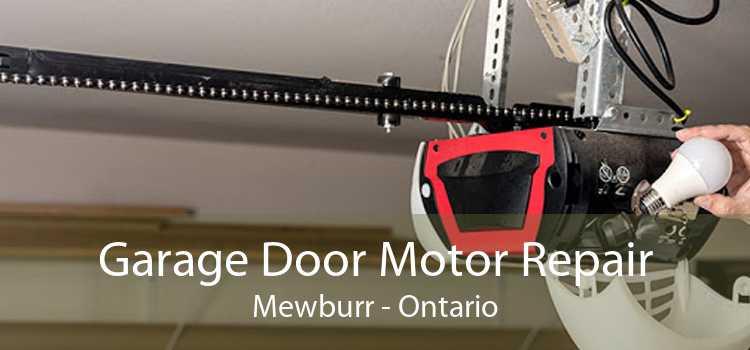 Garage Door Motor Repair Mewburr - Ontario