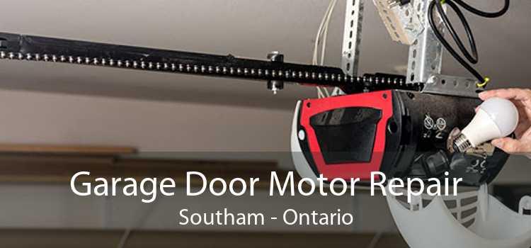 Garage Door Motor Repair Southam - Ontario