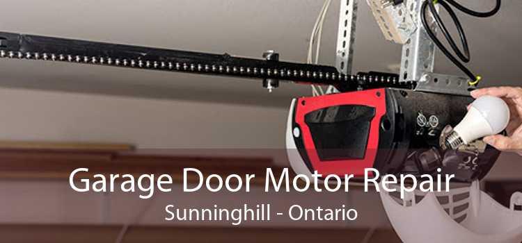 Garage Door Motor Repair Sunninghill - Ontario