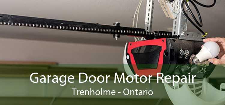 Garage Door Motor Repair Trenholme - Ontario
