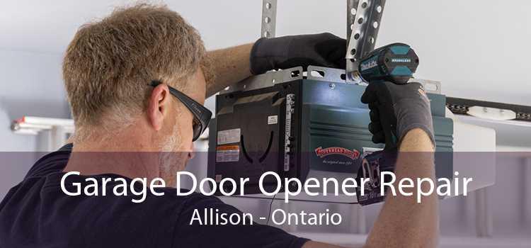Garage Door Opener Repair Allison - Ontario