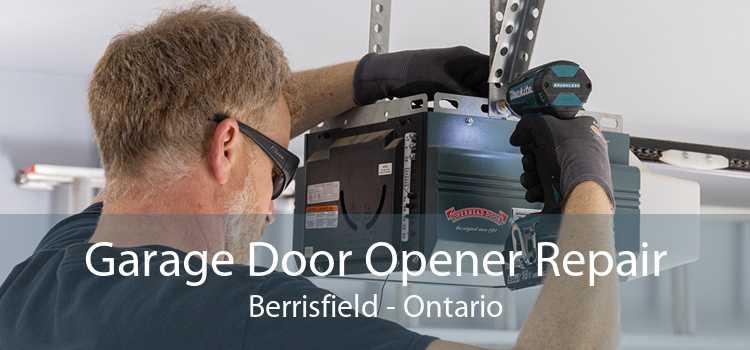 Garage Door Opener Repair Berrisfield - Ontario