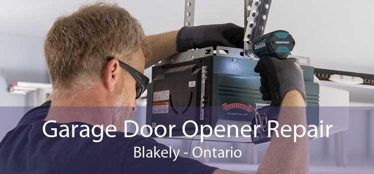 Garage Door Opener Repair Blakely - Ontario