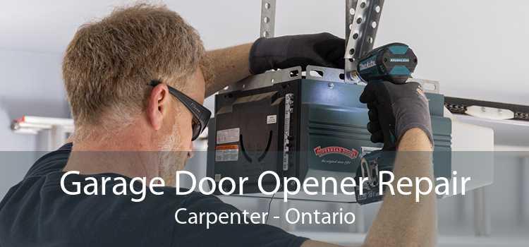 Garage Door Opener Repair Carpenter - Ontario