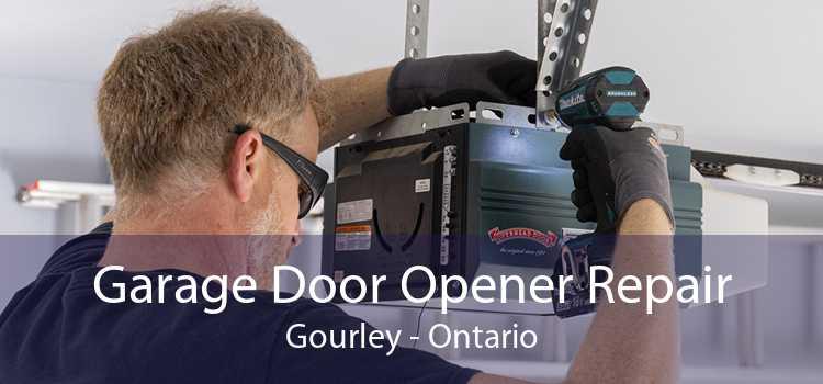 Garage Door Opener Repair Gourley - Ontario