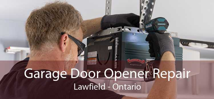 Garage Door Opener Repair Lawfield - Ontario
