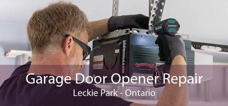 Garage Door Opener Repair Leckie Park - Ontario