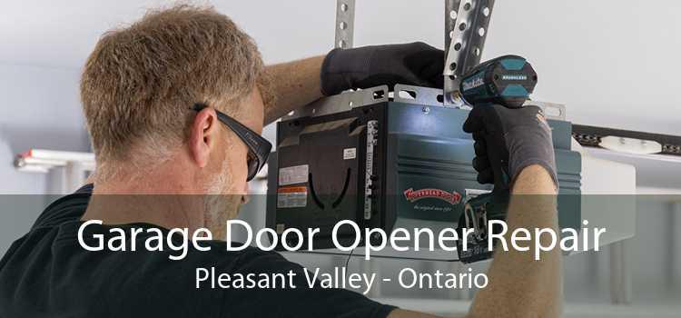 Garage Door Opener Repair Pleasant Valley - Ontario