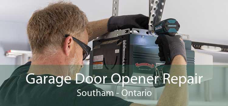 Garage Door Opener Repair Southam - Ontario