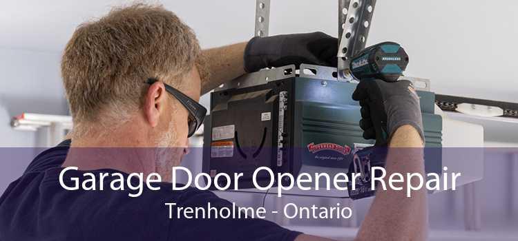 Garage Door Opener Repair Trenholme - Ontario