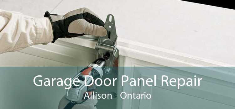 Garage Door Panel Repair Allison - Ontario