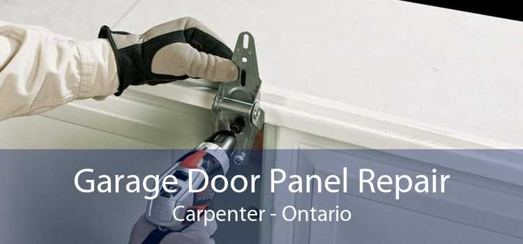 Garage Door Panel Repair Carpenter - Ontario