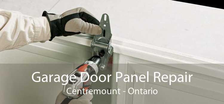 Garage Door Panel Repair Centremount - Ontario