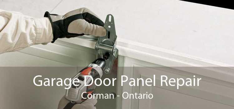Garage Door Panel Repair Corman - Ontario