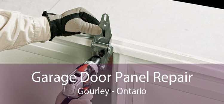 Garage Door Panel Repair Gourley - Ontario