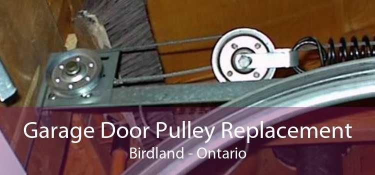 Garage Door Pulley Replacement Birdland - Ontario